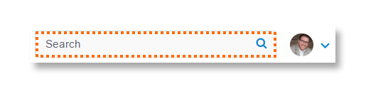 1n_ds_orange_search_box.png